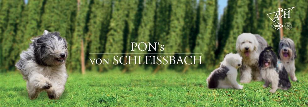 Logo PON-Hundezucht von Schleißbach Mainburg